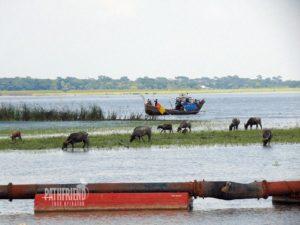 River of Bangladesh