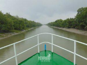 Sundarban safari tour