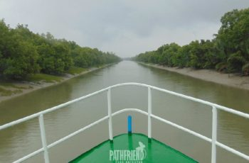 Sundarban safari tour